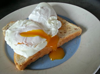 poached-egg-on-toast